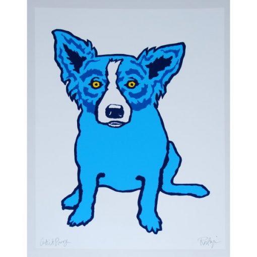 blue dog white background