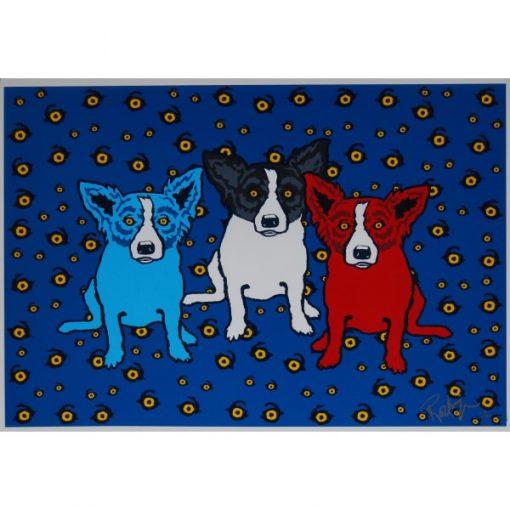 blue dog red dog black and white dog eyes background